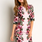 Floral Dress: Phase Eight Elodine Dress
