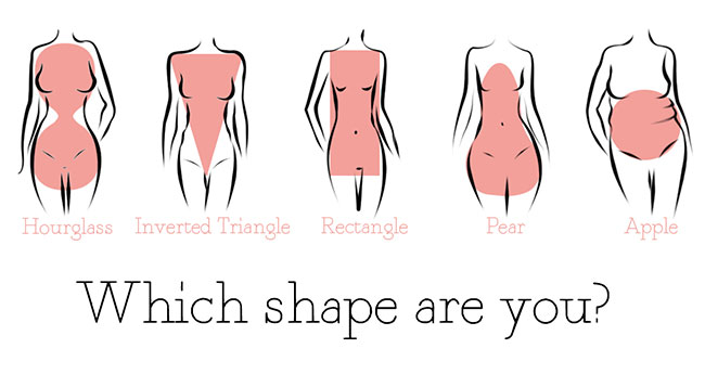 shape-guide